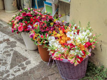 Flowers on a street market Stock Images