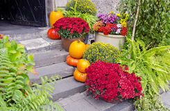 Flowers on street stair Royalty Free Stock Photo