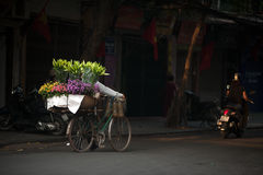 Flowers street vendor at Hanoi city,Vietnam. Daily life of the flower vendors sell on her bicycle in the typical street near old town at Hanoi city,Vietnam.This Stock Image