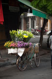 Flowers street vendor at Hanoi city,Vietnam. Daily life of the flower vendors sell on her bicycle in the typical street near old town at Hanoi city,Vietnam.This Royalty Free Stock Photo
