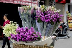 Flowers in a street vendors bike baskets stock image