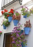 Flowers in the streets of Cordoba Royalty Free Stock Image