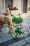 Flowers on the streets of Lviv Stock Photo