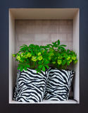Flowers in striped black and white pots stock image