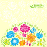 Flowers summer background Royalty Free Stock Photos