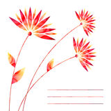 Flowers. Summer flowers for invitation or others stock illustration