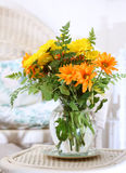 Flowers in the sun room Royalty Free Stock Photo