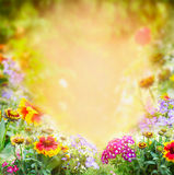 Flowers sunny garden background stock photos