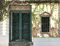 Flowers surround doors and windows Royalty Free Stock Photography