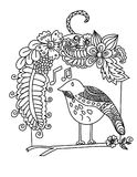 Flowers Surrounding Bird, and the Bird sings a song. Doodle art and zentangle style Flowers Surrounding Bird, and the Bird sings a song Stock Images