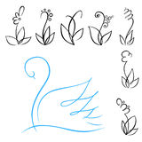 Flowers and swan. A set of linear flowers and blue swan Stock Photos