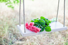 Flowers on a swing Royalty Free Stock Images