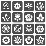 Flowers symbols set Royalty Free Stock Photography