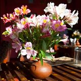 Flowers on table Royalty Free Stock Images