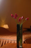 Flowers on a table in the room Stock Photography