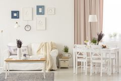 Flowers on table in white living room interior with pink drapes and posters above sofa. Real photo. Concept stock image