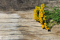 Flowers of tansy on wooden background. Flowers of tansy on the wooden background royalty free stock photo
