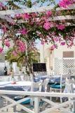 Flowers of taverna on Santorini island, near black beach Royalty Free Stock Photography