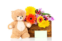 Flowers and a teddy bear. On white background Royalty Free Stock Images