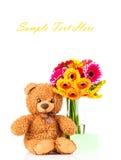 Flowers and a teddy bear. Flowers and teddy bear on white background Stock Photos