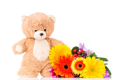Flowers and teddy bear. On white background Royalty Free Stock Photos