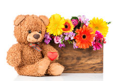 Flowers and teddy bear. On white background Royalty Free Stock Photo