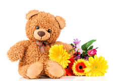 Flowers and a teddy bear. Flowers and teddy bear on white background Royalty Free Stock Image