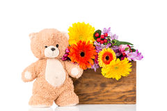 Flowers and a teddy bear. On white background Stock Photo