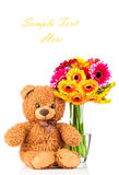 Flowers and a teddy bear. On white background Royalty Free Stock Image