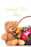 Flowers and a teddy bear Royalty Free Stock Photo
