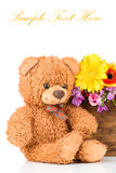 Flowers and a teddy bear. On white background Stock Photography