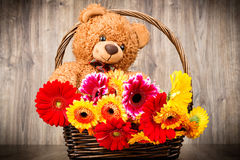 Flowers and a teddy bear. On wooden background Royalty Free Stock Images