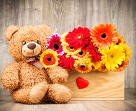 Flowers and a teddy bear. On wooden background Royalty Free Stock Photo