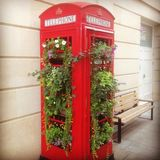 Flowers in Telephone Box stock images