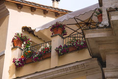 Flowers on the terrace of the Italian house Royalty Free Stock Photo