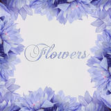 Flowers text on white background Stock Photo