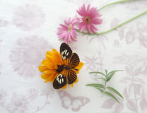 Flowers on textured paper with butterfly Royalty Free Stock Images
