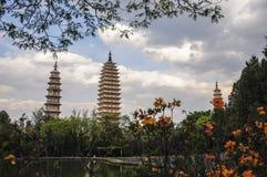 Flowers of three towers. Stock Image