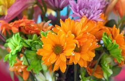 FLOWERS TO BRIGHTEN YOUR DAY. This vividly colorful flower arrangement would make anyone's day special. Bold colors of orange, purple and green royalty free stock images