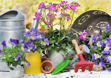 Flowers and tools Royalty Free Stock Images