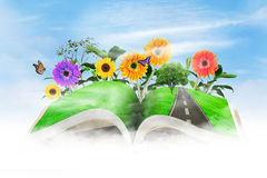 Open book with flowers Royalty Free Stock Photo