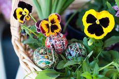 Flowers and traditional easter eggs Royalty Free Stock Image