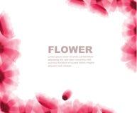 Flowers. Transparent flower background different shape Stock Photo