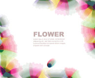 Flowers. Transparent flower background different shape Royalty Free Stock Photo