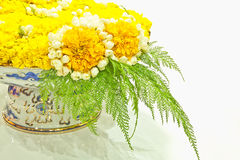 Flowers tray Royalty Free Stock Photo