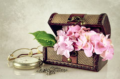 Flowers in the treasure chest. On grunge background Stock Images