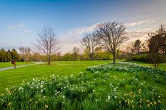 Flowers and trees at Cylburn Arboretum in Baltimore, Maryland.  stock photography