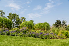 Flowers and Trees on Landscaped Garden Hill Royalty Free Stock Photography