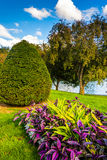 Flowers and trees at the Public Garden in Boston, Massachusetts. Stock Photos