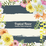 Flowers Tropical Seamless Pattern Watercolor Painting Style on b Royalty Free Stock Photography